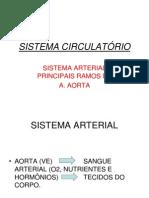 Sist.circulatorio-ramos Da Aa.aorta