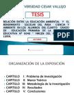 PRESENTACION TESIS DIAPOSITIVAS