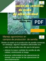 (2) Manejo agronómico y etapas fenologicas en la producción de semilla de maíz
