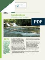 Fs Caudal Ecologico