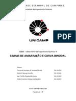 Relatório - Linhas de Amarração & Curva Binodal - FEQ EQ801 - UNICAMP - Grupo 2