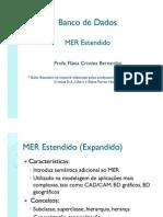 MER_Estendido