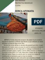 SUNCA AFUMATA