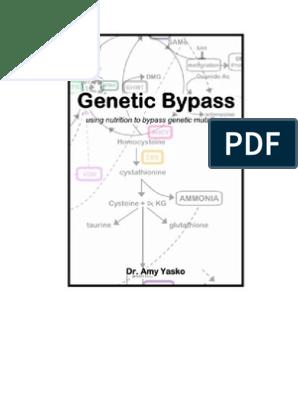 Genetic Bypass Book | Nutrigenomics | Dna Methylation