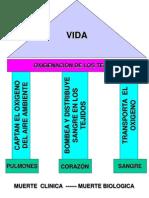 3Auxilios Atencion General