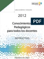Instructivo_Pedagogia_2012