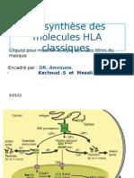 Bio Synthese Des Molecules HLA Partie 1