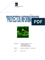 informeproyectoinformaticos-100701181445-phpapp01