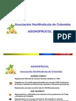 Asociacin Hortifrutcola de Colombia