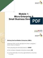 IRDA1 SME Development