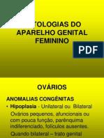Patologias - Aparelho Genital Feminino - Veterinaria