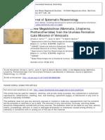 A New Megadolodinae From the Miocene of Urumaco Venezuela