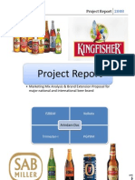 Mkt Project-Beer India