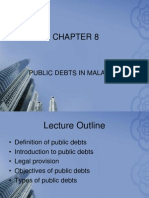 CHAPTER8 Public Debts
