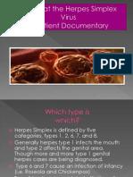 Herpes Simplex Virus Project