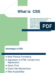 What is  CSS