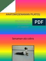 Anatomi(Senaman Pilates) Presnt