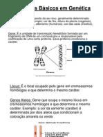 20091123091316_Conceitos Basicos Em Genetica