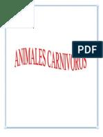 Album de Tipos de Animales