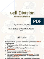 Biodas Cell Division