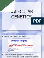 Molecular Genetic Ppt