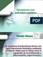 Receptores_con_actividad_catalítica