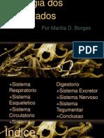 Fisiologia Dos Vertebra Dos
