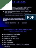 File Viruses