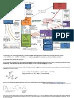 Organic Flow Chart 16