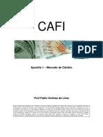 Livro Fabio Uchoa - Câmbio