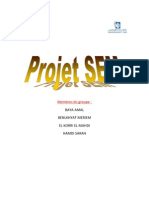Projet SEM