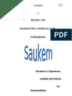 Saurashtra chmical