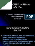 Insuficiencia Renal Aguda Hh (v)