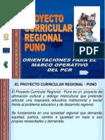 Orientaciones Del Pcr.