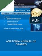 RADIOANATOMIA DE CRÁNEO Y SENOS PARANASALES