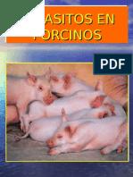 Parasitos en Porcinos