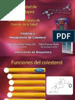 8. Estatinas y Metabolismo de Colesterol