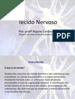 Tecido_Nervoso
