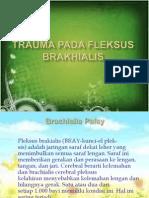 Trauma Pada Fleksus Brakhialis