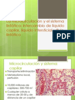 La microcirculación y el sistema linfático