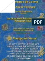 Las Cinco Áreas Principales de La Percepción Visual