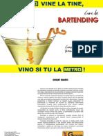 1 - Curs de Bar Tending
