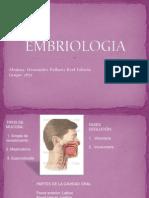 EMBRIOLOGIA y Mal Formaciones