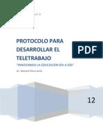 Protocolo Para El Desarrollo de La Propuesta Para Organizar El Teletrabajo