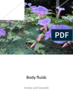 4. Body Fluid