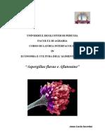 A. Flavus e Aflatossine