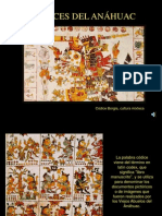 17 Codices Anahuac