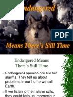 Endangered Species Presentation