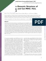 Comp Genomic Sructure HLA DLA FLA