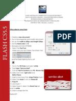 Flash Handout 9 12